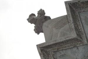 detail kruisbloem