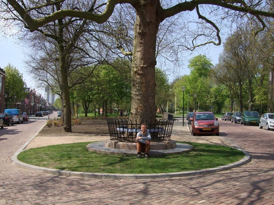 Nieuwe situatie Hekwerk Bevrijdingsboom Vlaardingen exoot restauratie Walraad architecten